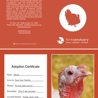 Vegan Thanksgiving Menu + Adopt a Turkey