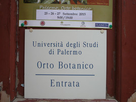 L'Orto Botanico di Palermo - de botanische tuin van Palermo