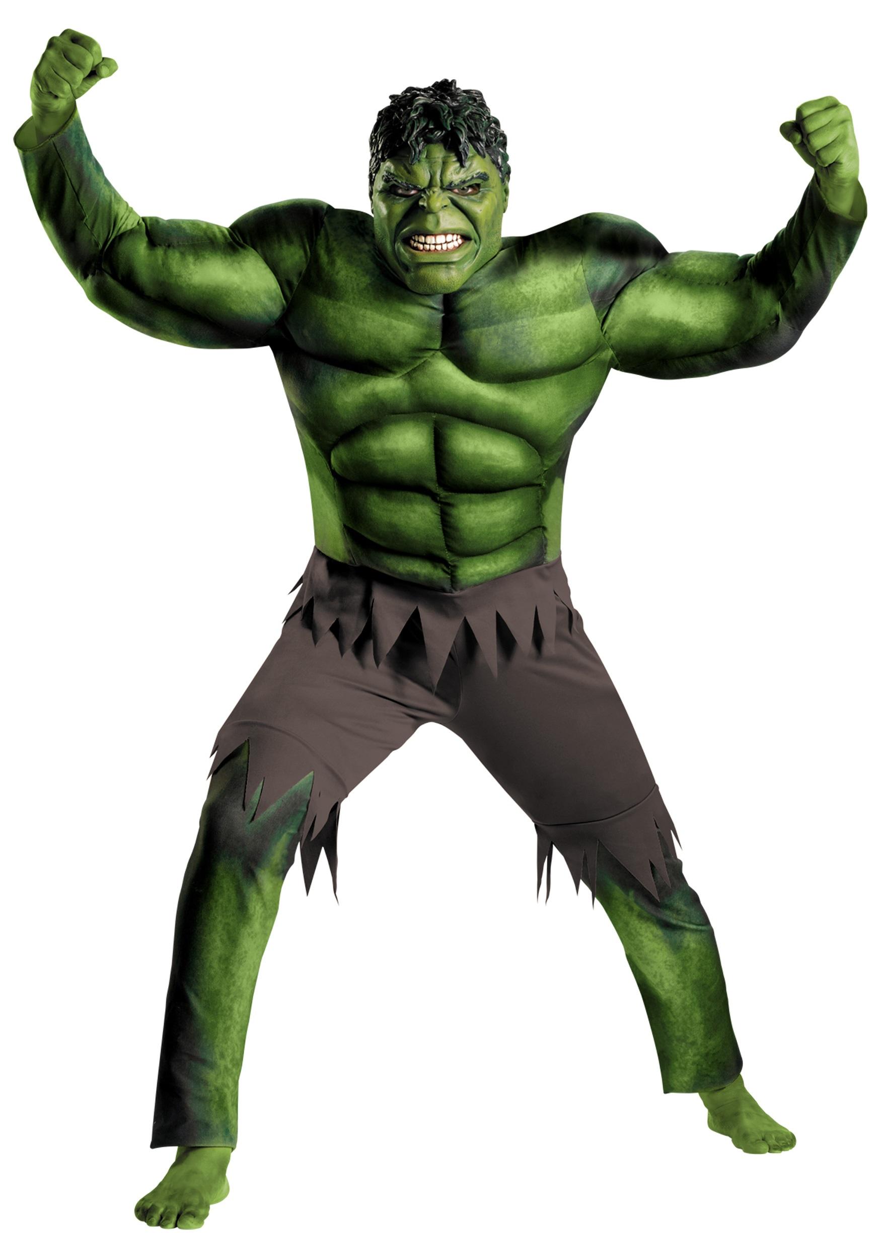 Adult Avengers Hulk Costume