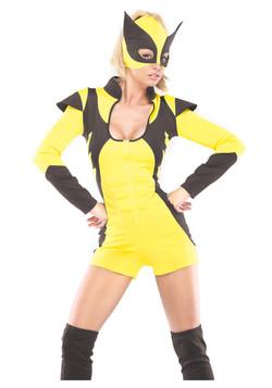 Womens Sexy Superhero Costume