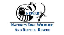 Nature's Edge Wildlife and Reptile Rescue