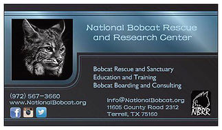 National Bobcat Rescue and Research Center