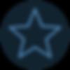 icons8-christmas-star-100.png