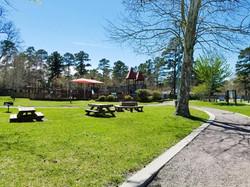 Trailing Vine Apartments Spring, TX