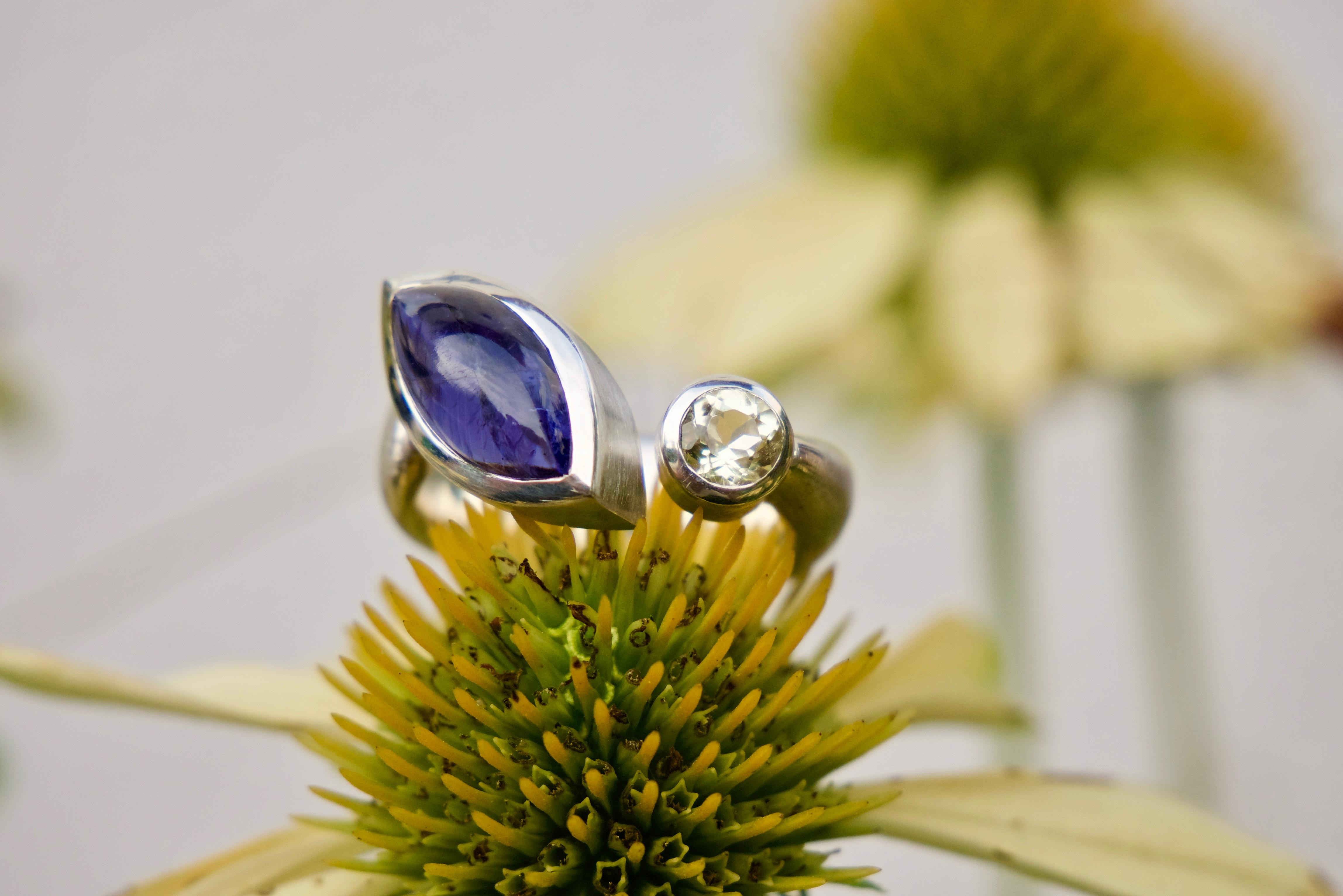 D 33 - Ring ,,Blaublütig''