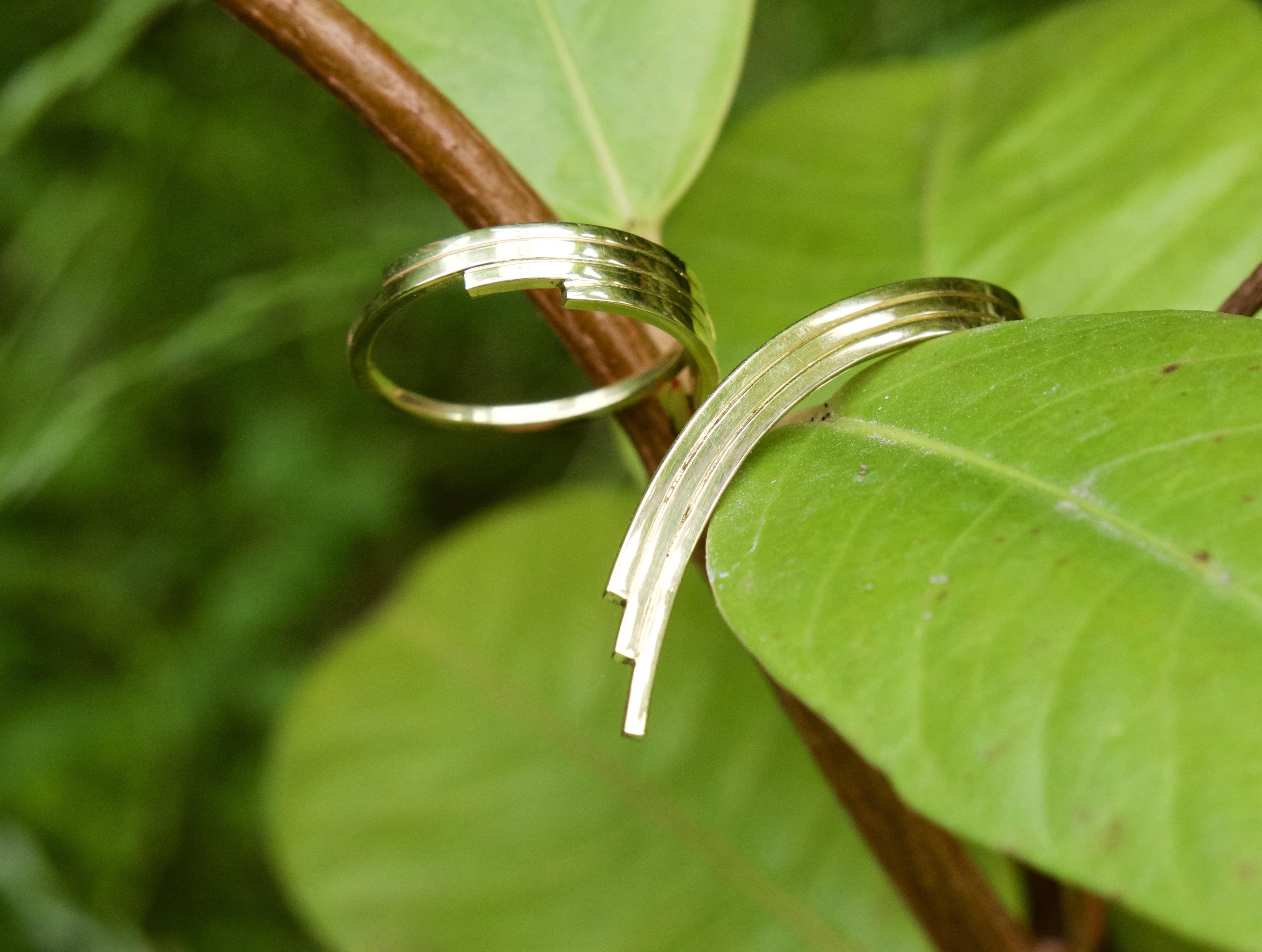 W5 - Wunderwald Ring