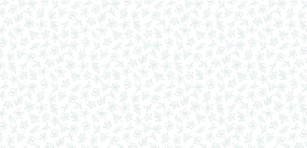 Website background (teal).png