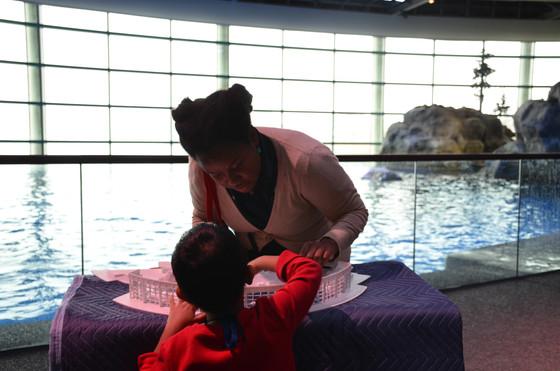 Shedd Aquarium Tactile and Described Aquatic Show II