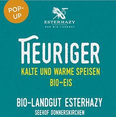 210527_Hoffest_Heuriger_A5_RZ_1[1].jpg
