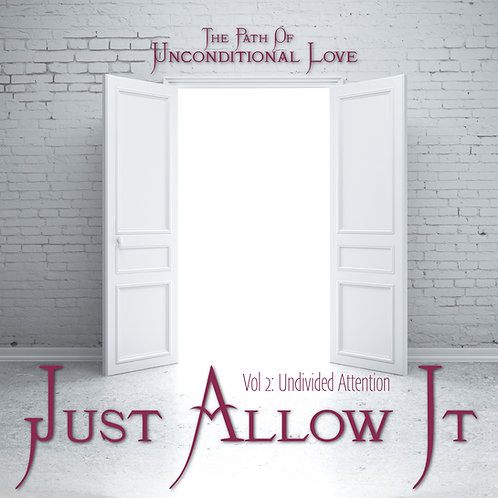 Just Allow It Vol 2 Undivided Attention
