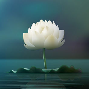 vector-white-lotus-flower-pad-pond-isolated-blur-background_1284-48393.jpg