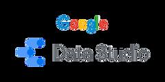 Panalyt Google Data Studio Tool