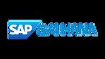SAP S/4 HANA Panalyt People Analytics Integration
