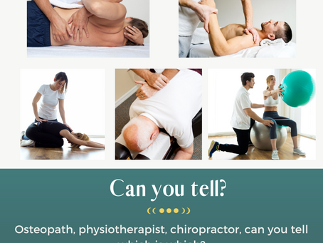 Osteopath, physiotherapist, or chiropractor; which one to choose?