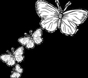 Hand-drawn butterflies