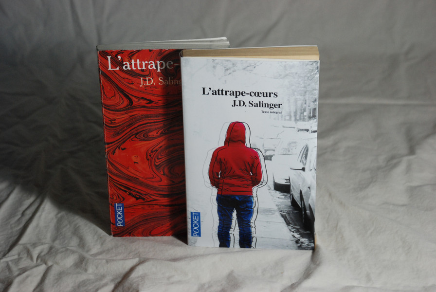 Jaquette de livre   2010