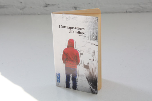 Jaquette de livre | 2010