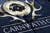 cgc flag WEB.png