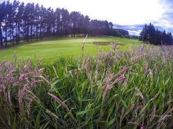 Carnwath 12th hole
