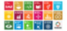 the-global-goals-grid-color_edited.jpg