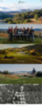 Homepage_1x.jpg