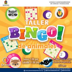 Post-Bingo-Animales