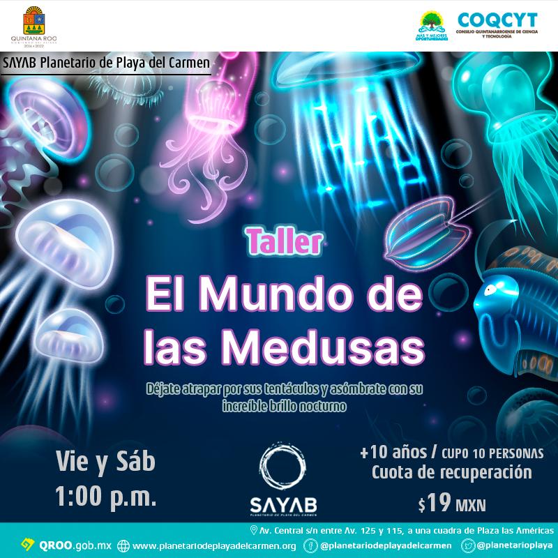 Taller-Medusas