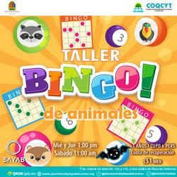 Bingo-Animales