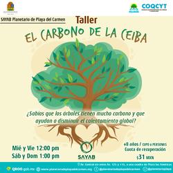 Carbon-ceiba