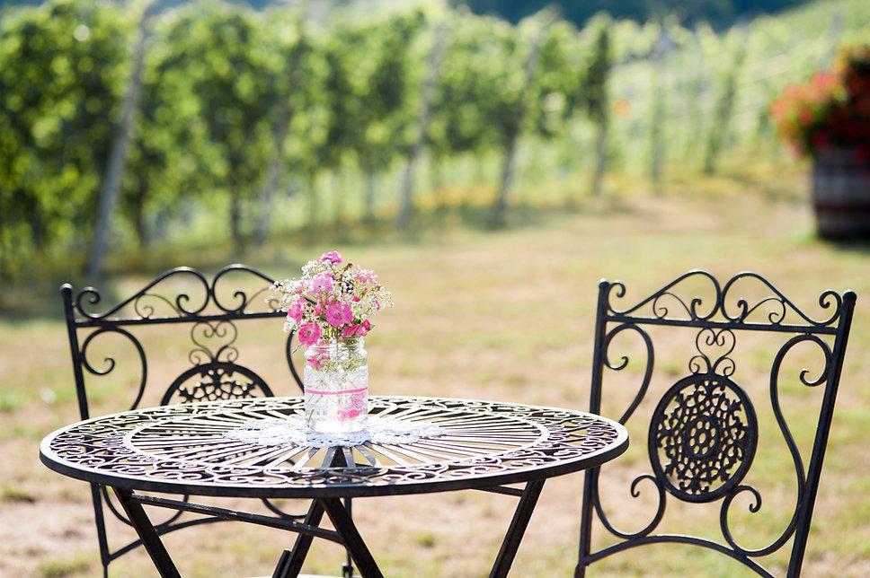 Weingut Gamser-055.jpg