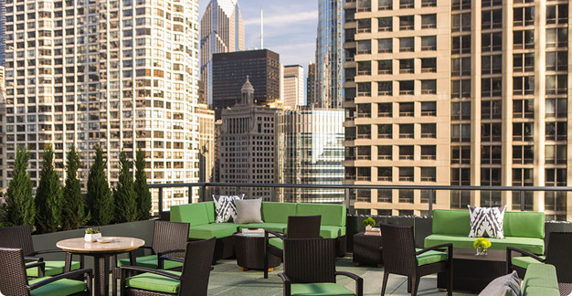 Pet Friendly Hotels In Chicago