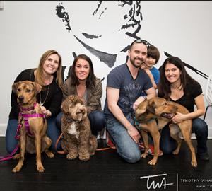 Dog Wedding Chicago