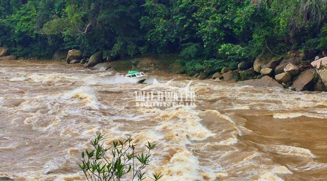Speedboat battles against waves and rocks on a jungle river in Borneo
