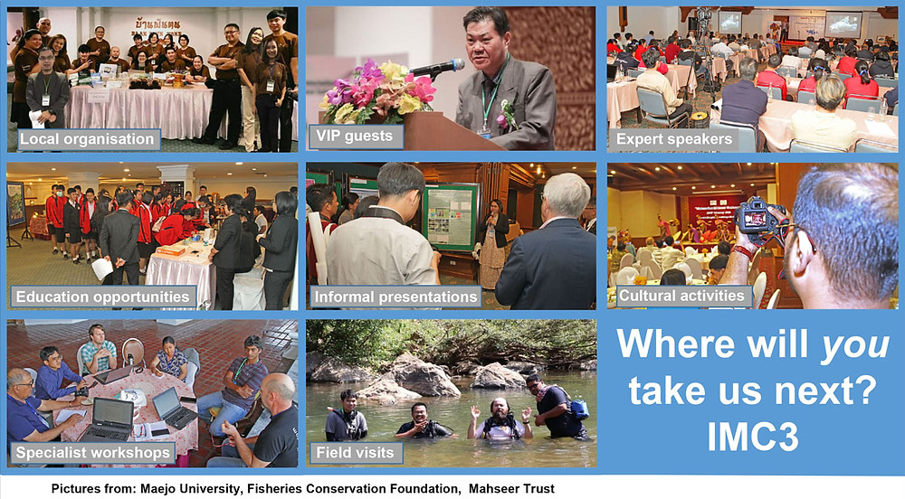 Montage of images from IMC2 in Thailand