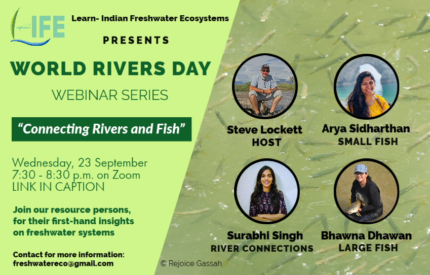 Poster advertising a fish and river connectivity webinar