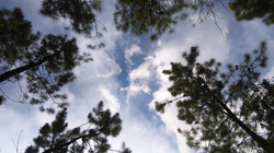 cubierta a cielo abierto