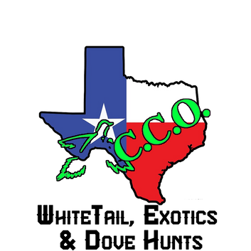 Texas Best Dove Hunts - C.C.O.