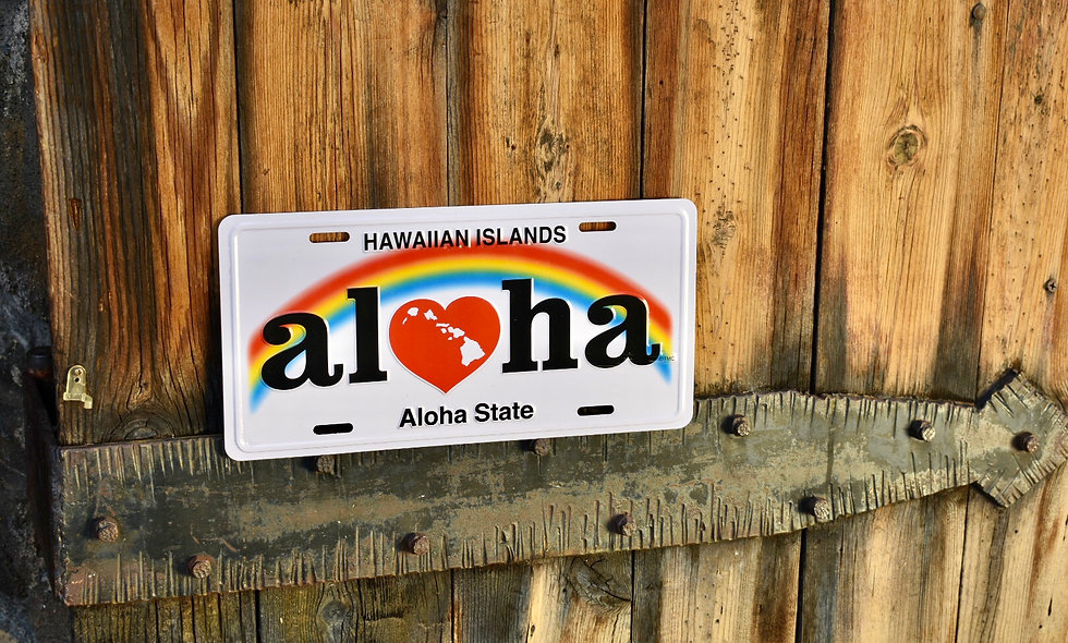 Hawai'i License Plate Signs