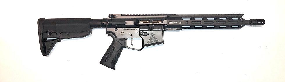 NWCP Rise Armament 22RF