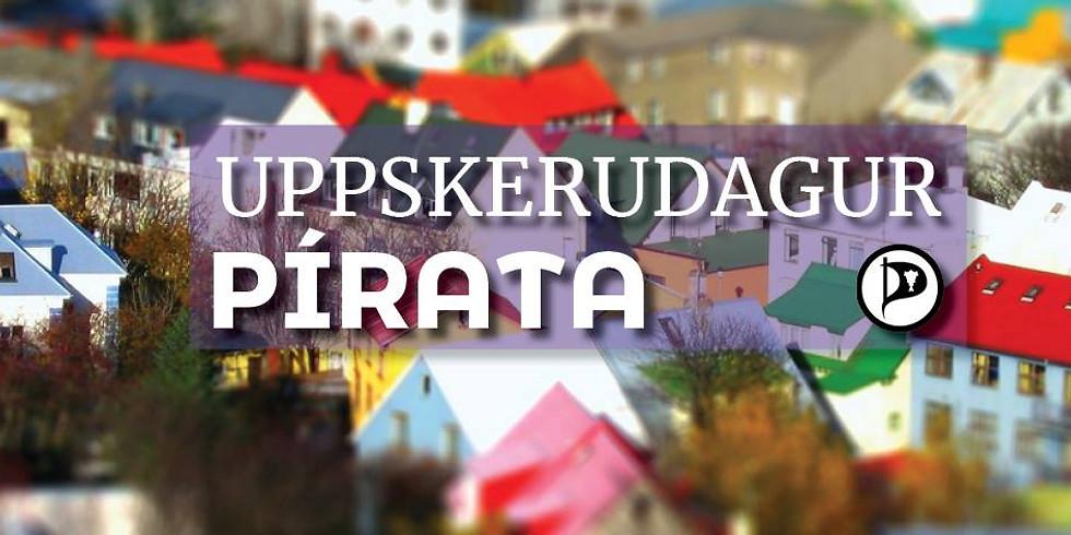 Uppskerudagur stefnumótunarvinnu Pírata á höfuðborgarsvæðinu