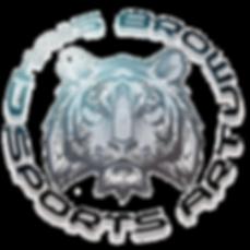 TigerShirtDesign1Web_edited_edited.png