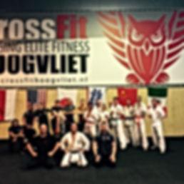 crossfit striking, groepstrainingen, crossfit, rogue, fightgym crossfit, kyokushin karate, NKKU