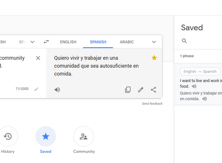 One Cool Way to Use Google Translate to Expand Your Vocabulary in English