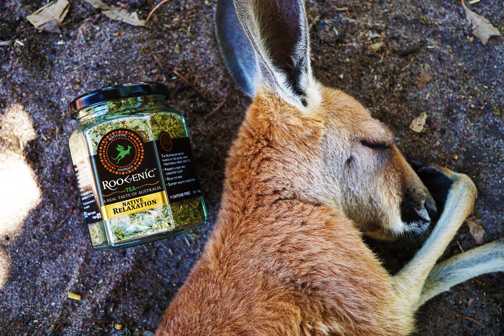 Native Relaxation - Kangaroo 1.JPG