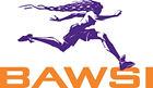 Bay Area Women's Sports Initiative