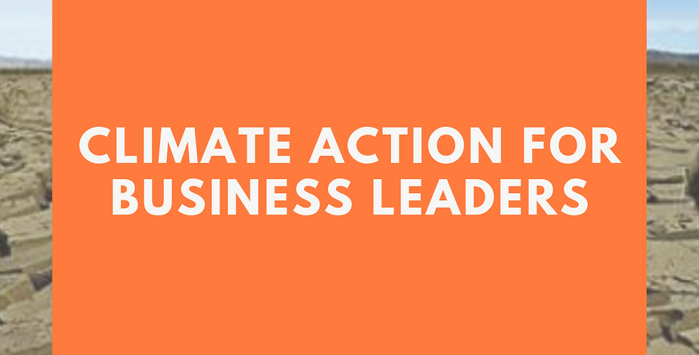 Climate Action for Business Leaders