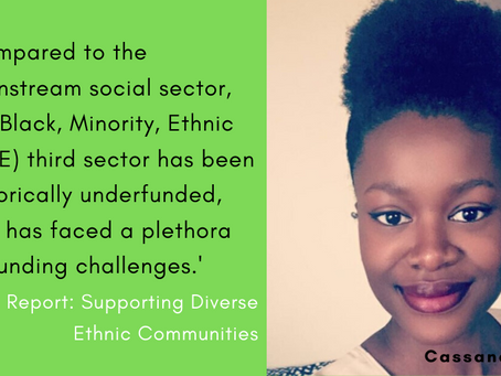 New report: Supporting Diverse Ethnic Communities