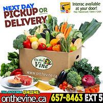 on the vine online ad.jpg