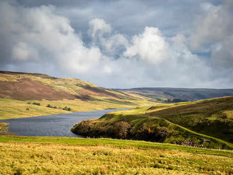 The Vital Role of Grouse Moors in Conservation & Fighting Climate Change