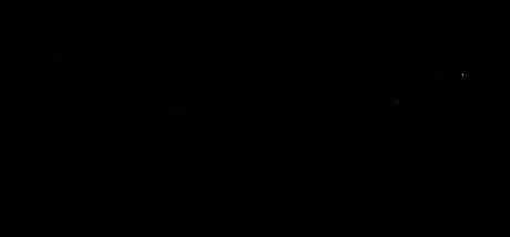 Nays-logo-black.png